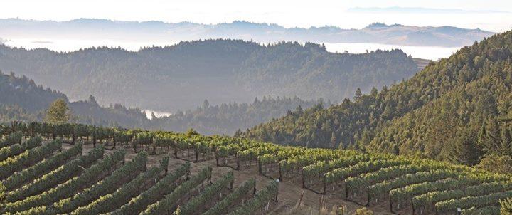 Fort Ross Vineyards Wine Tasting