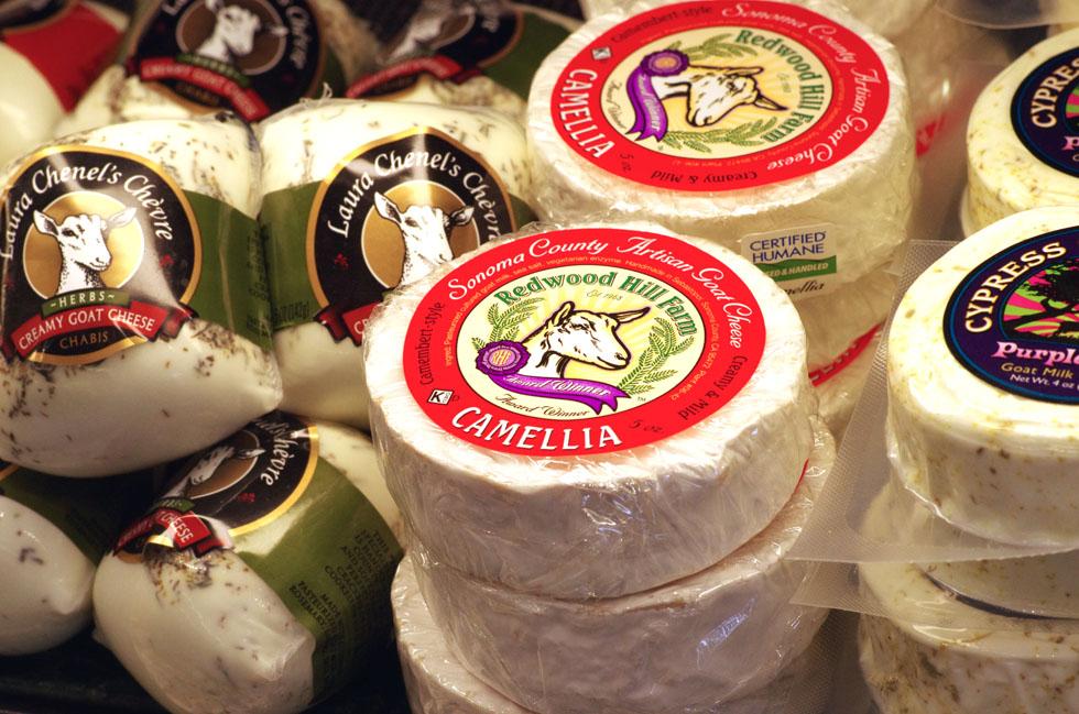 4.6-Surf Gourmet Cheese SoftVTour-1