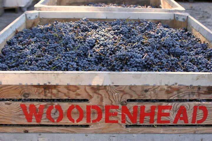 Woodenhead Wine Tasting