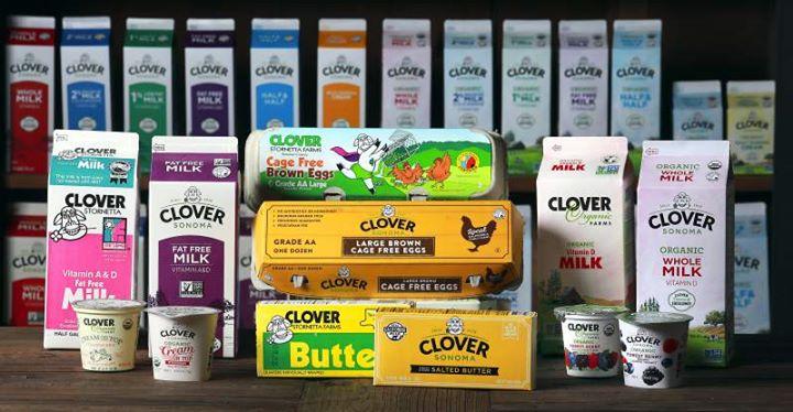 Clover Sonoma Tasting and Demonstration